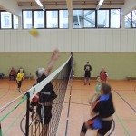Vereinsvolleyball-2013-005