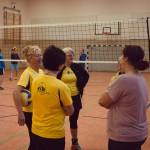 Volleyballturnier-2014-004