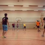 Volleyballturnier-2014-015