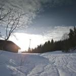 snowday-32